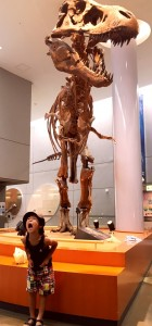 メガ恐竜展